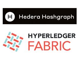 Hedera Hasgraph Logo